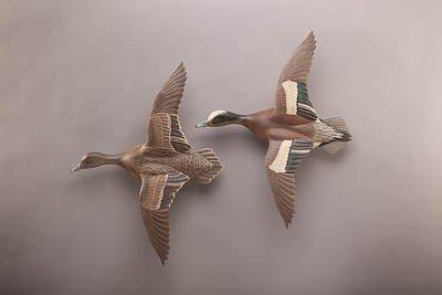 22: Flying Widgeon Pair