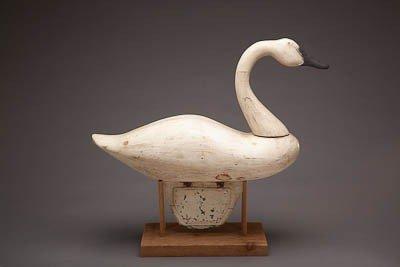 49: Swan - 3