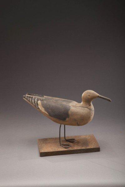 116: Gull