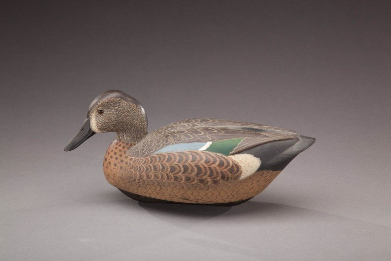 150: Blue-Winged Teal