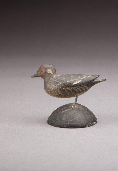 204: Miniature Bufflehead Hen