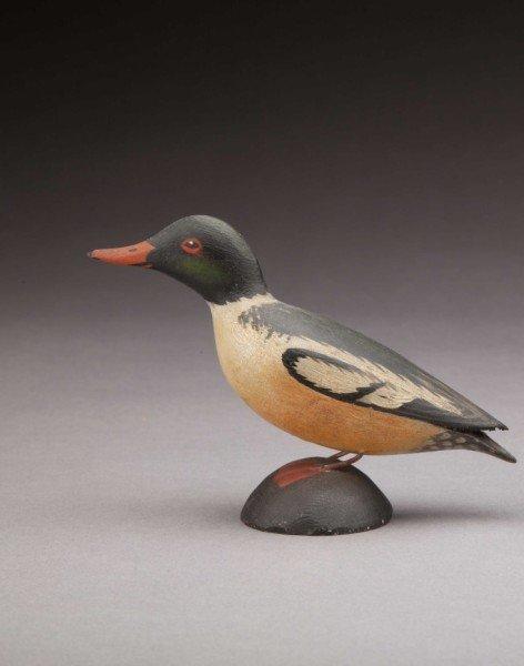 209: Miniature American Merganser Drake