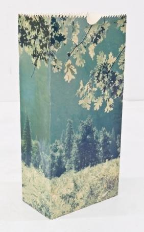 Jerry McMillan (b.1936 California) ''Yosemite'' 1968