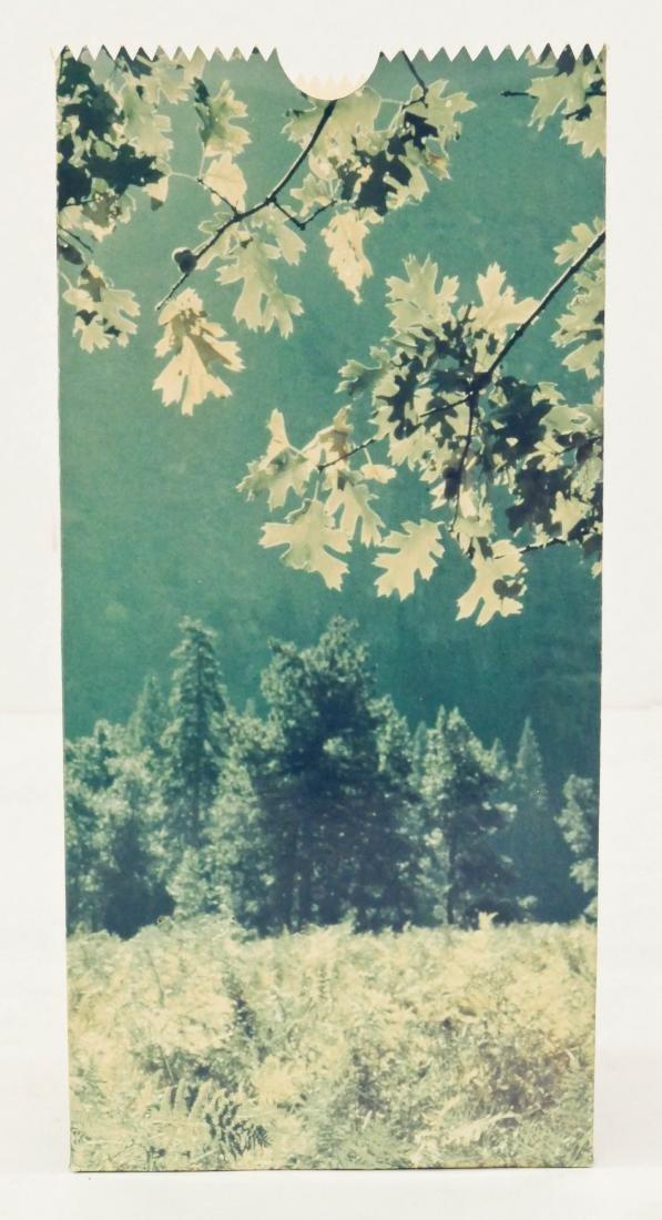 Jerry McMillan (b.1936 California) ''Yosemite'' 1968 - 2