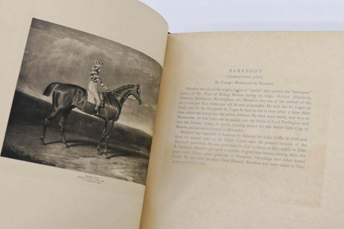 ''Cherished Portraits of Thoroughbred Horses from the - 5