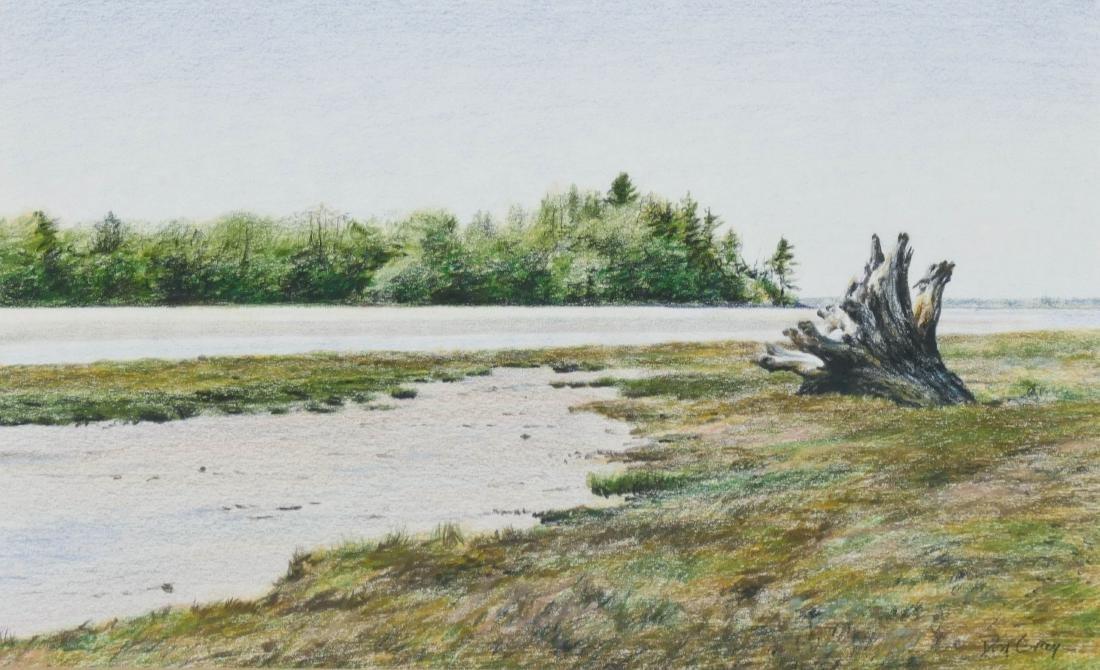 Don Gray (b.1948 Oregon) Untitled River Scene Pastel on