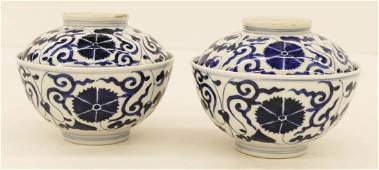 Pair Chinese Ming Style Blue  White Covered Tea Bowls