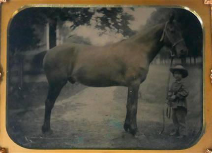 Half Plate Tintype Photograph of Horse and Child