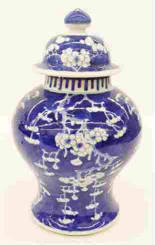 Chinese Qing Blue & White Prunus Jar