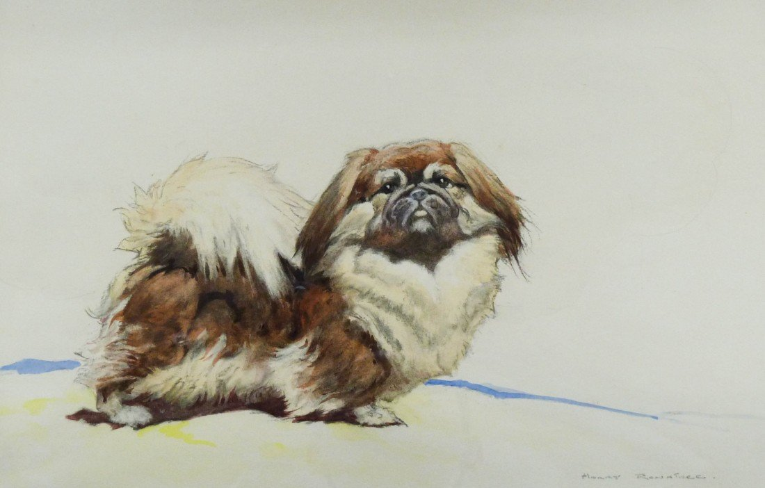 15: Harry Rountree (1878-1950 UK) ''Pekinese Dog'' Illu