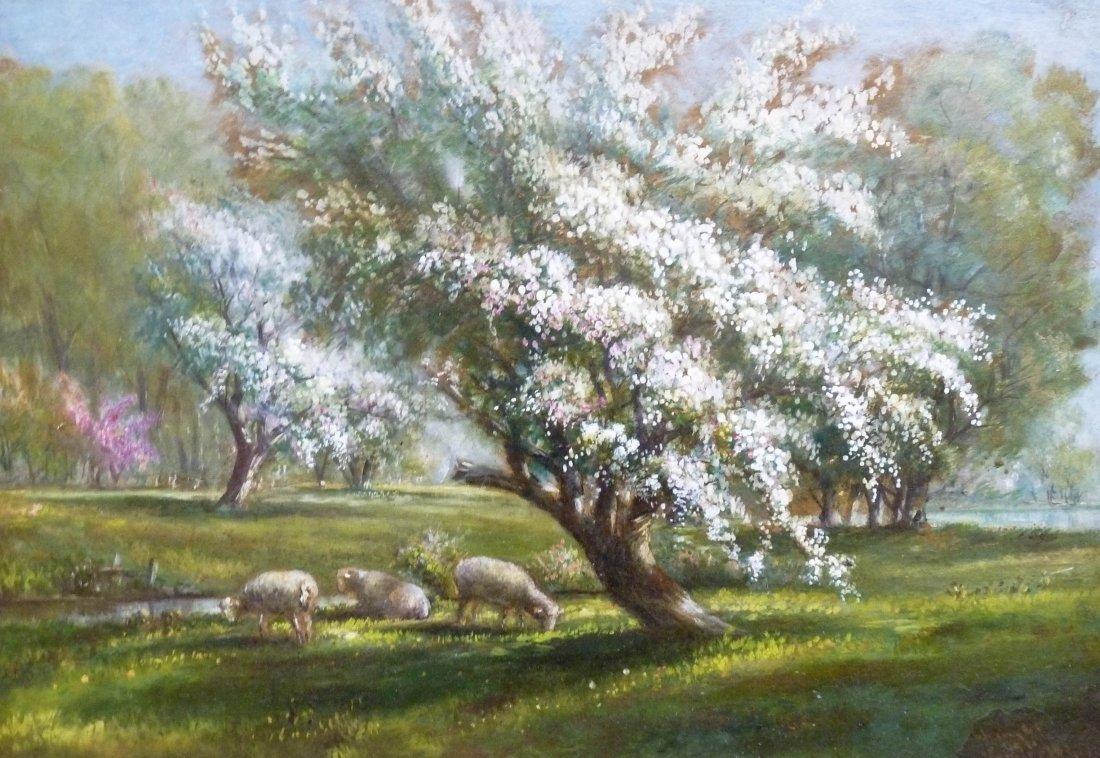 17: Verner Moore White (1863-1923 MI) Untitled Sheep Gr