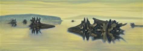 Paul Havas 19402012 Washington Untitled Driftwood