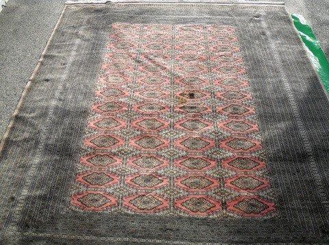 19: Pakistani Salor Bokara Carpet