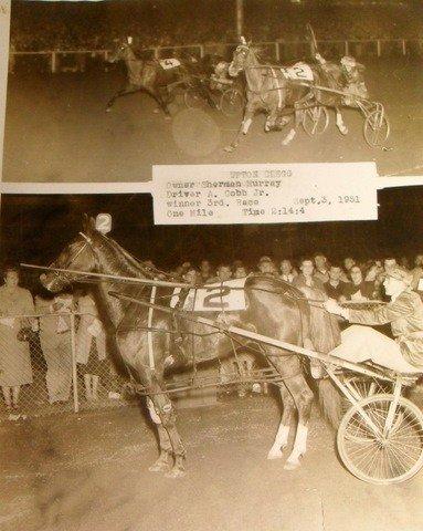 200: Maine & New England Harness Racing Memorabilia - 5