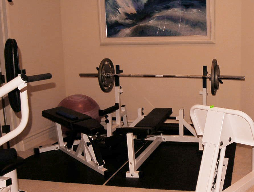 Vectra On-line 1100 Weight Bench
