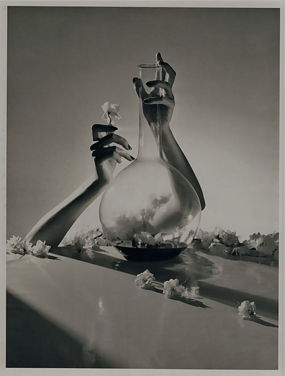 15: Horst P Horst Flower Arrangement  Photo Gravure