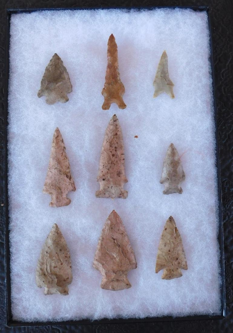 Paleo & Archaic Ohio Collection