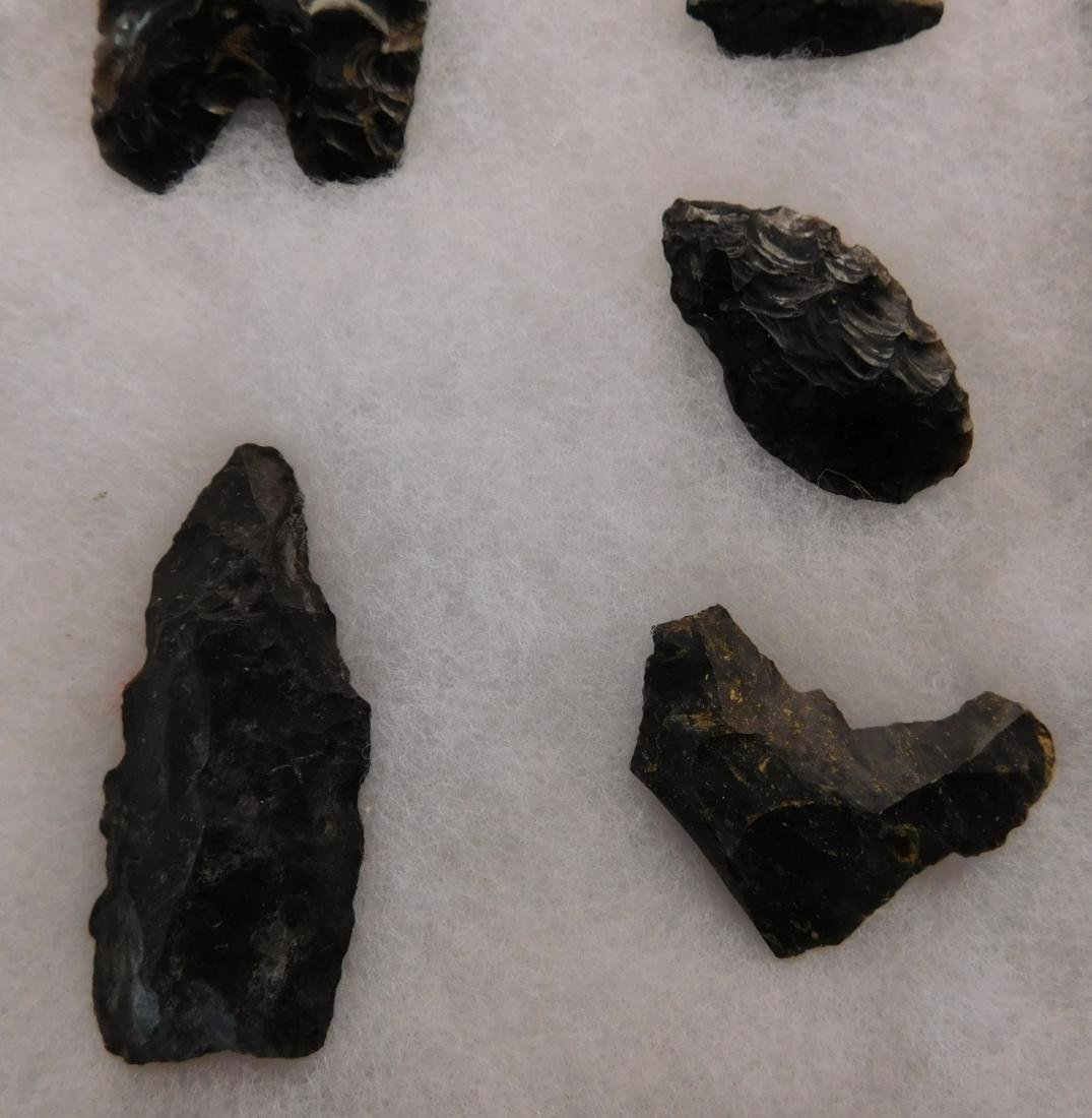 California Paleo Points - 2