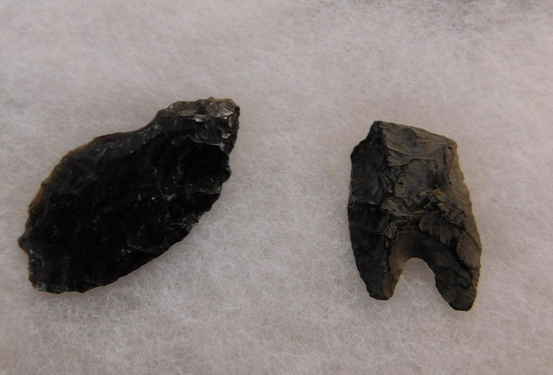 California Paleo Points - 8