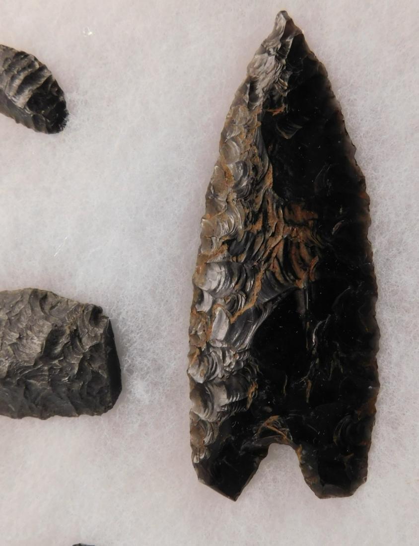California Paleo Points - 9