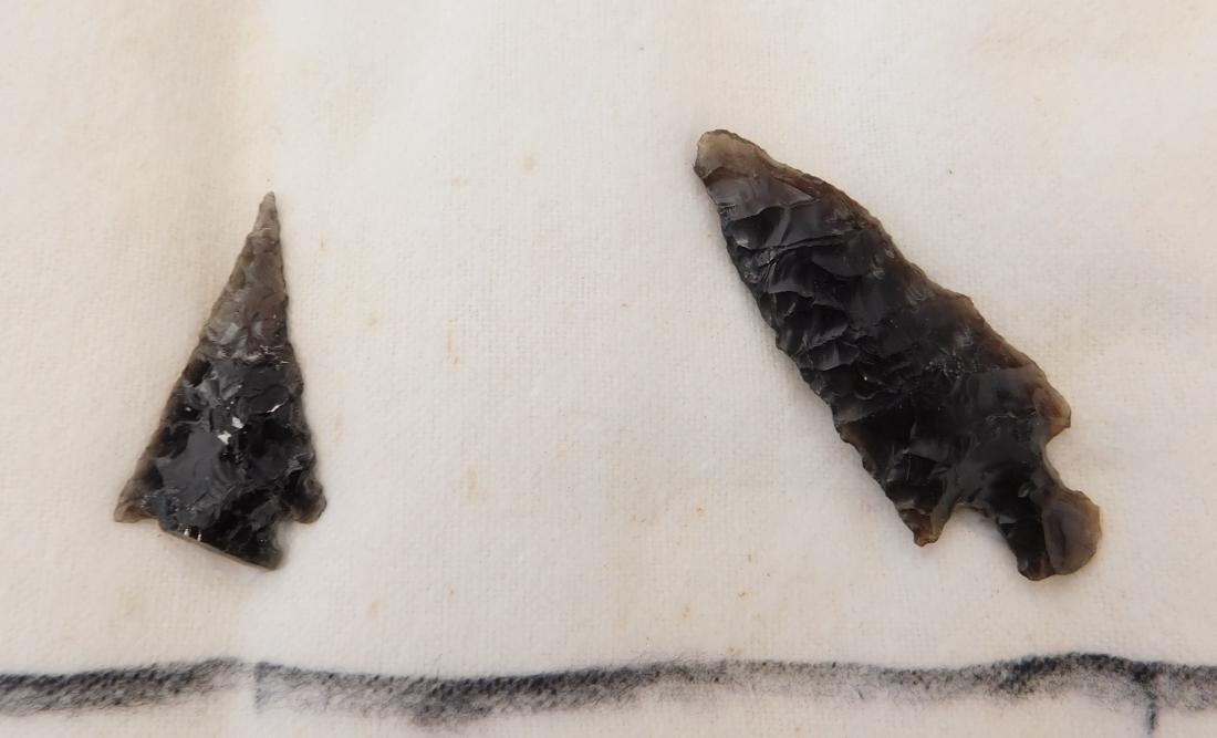 California Obsidian Collection - 4