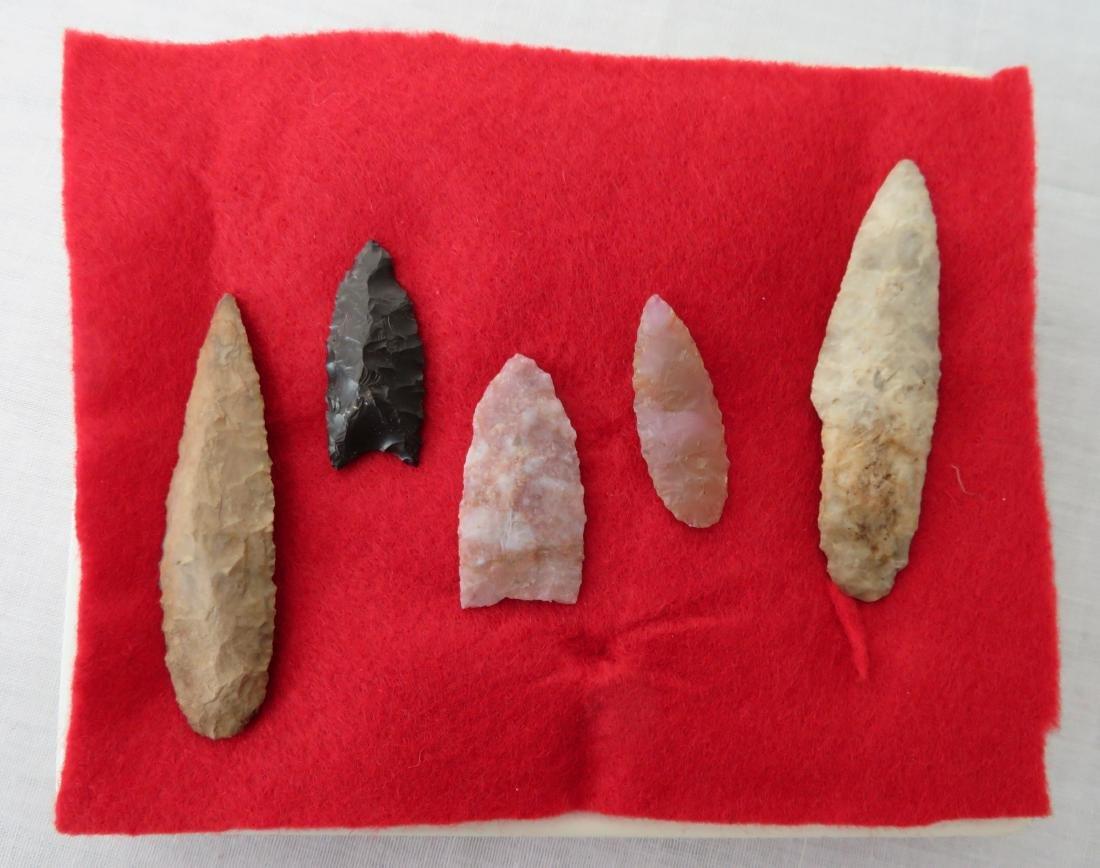 Bolivian Paleo Points w/Helm COA