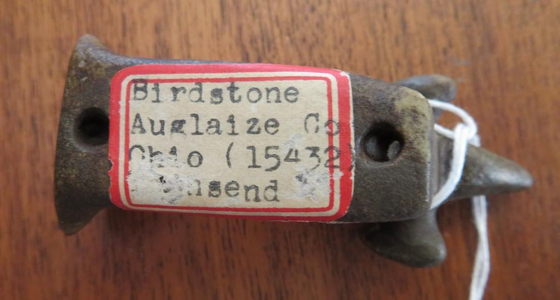 Popeyed Birdstone - 6