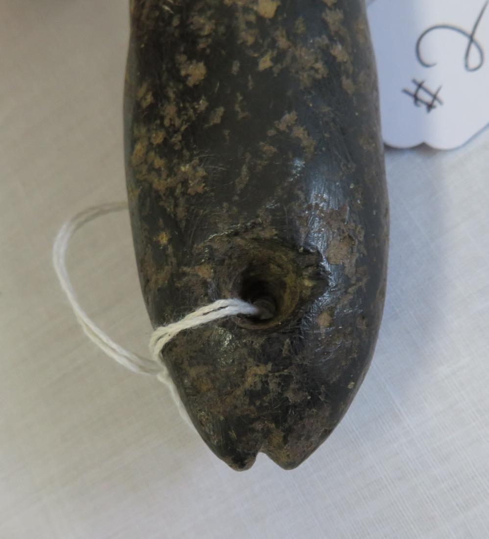 Chumash Phallus Fish - 6