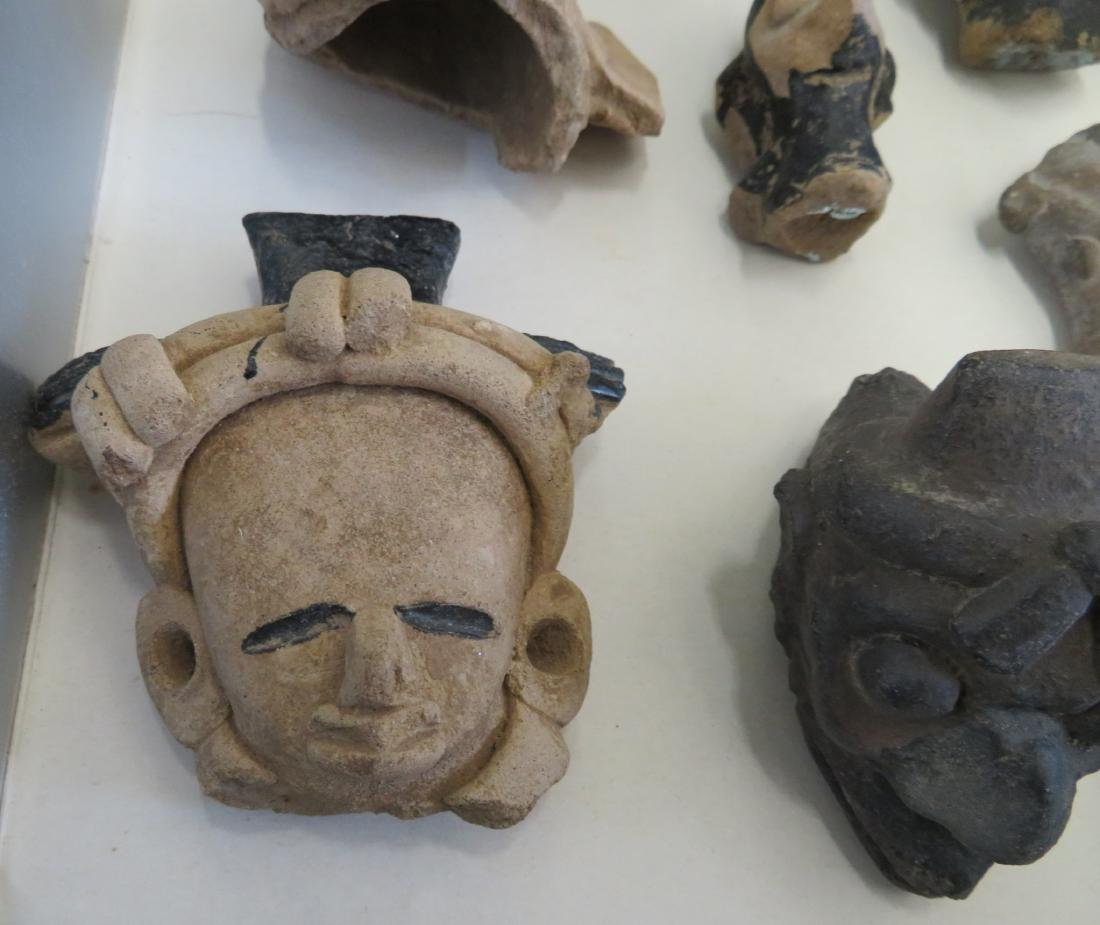 Pre-Columbian Black Head Collection - 7