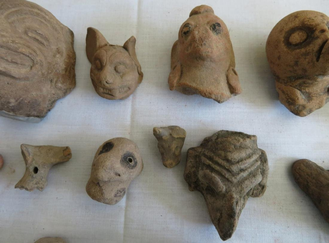 Pre-Columbian Ceramic Animal Heads - 6
