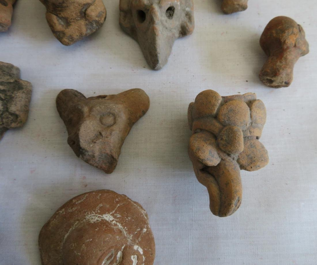 Pre-Columbian Ceramic Animal Heads - 8