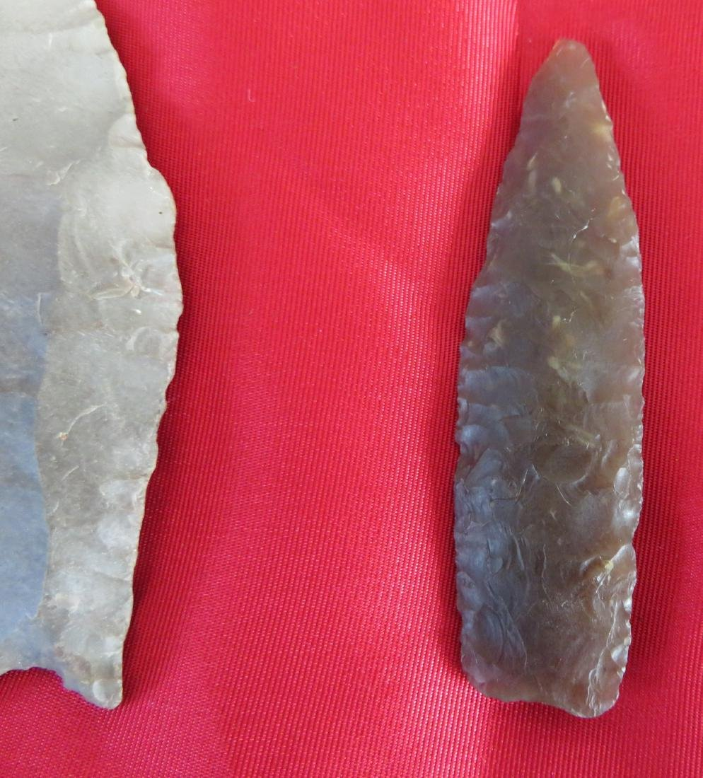 Collection of Paleo Points - 4