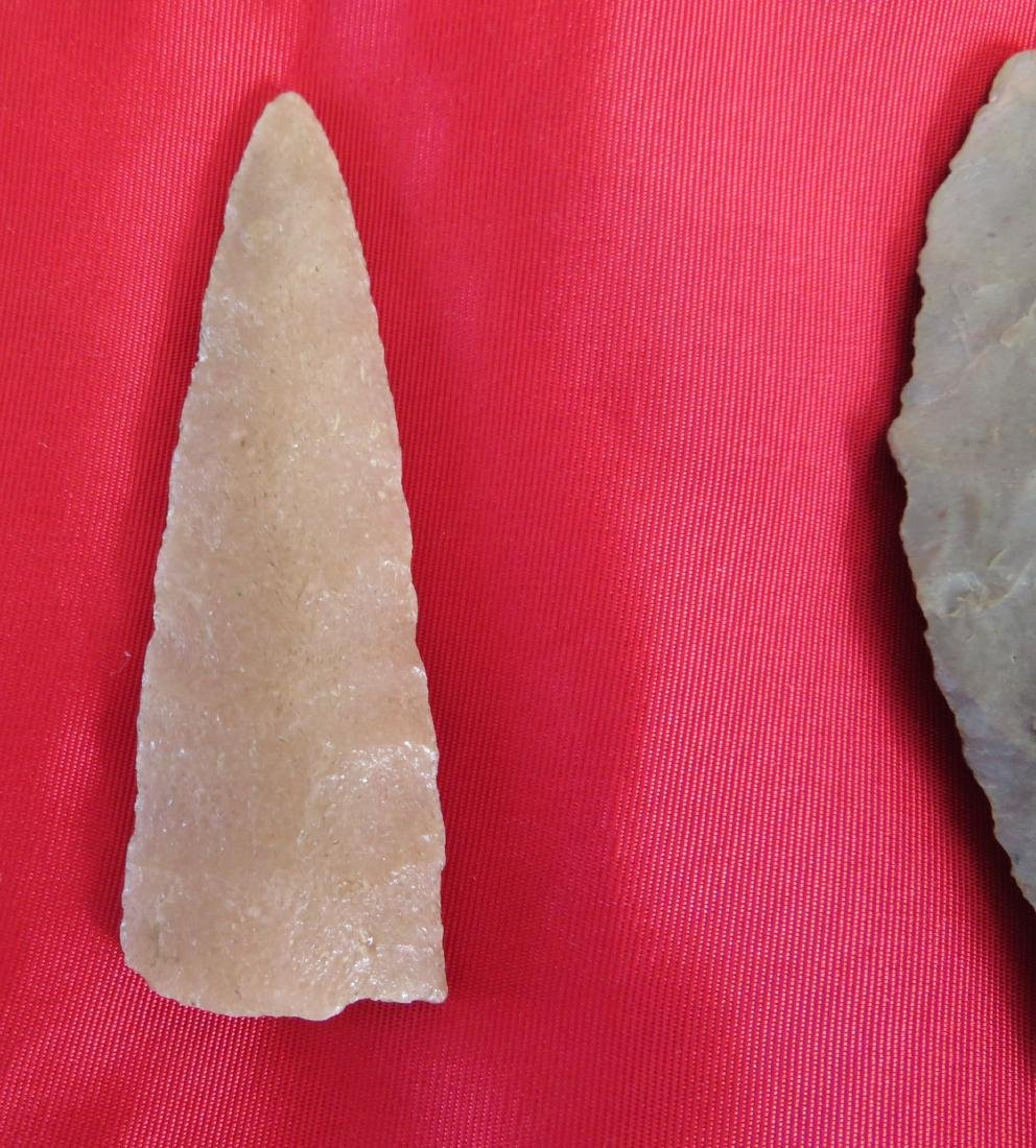 Collection of Paleo Points - 7