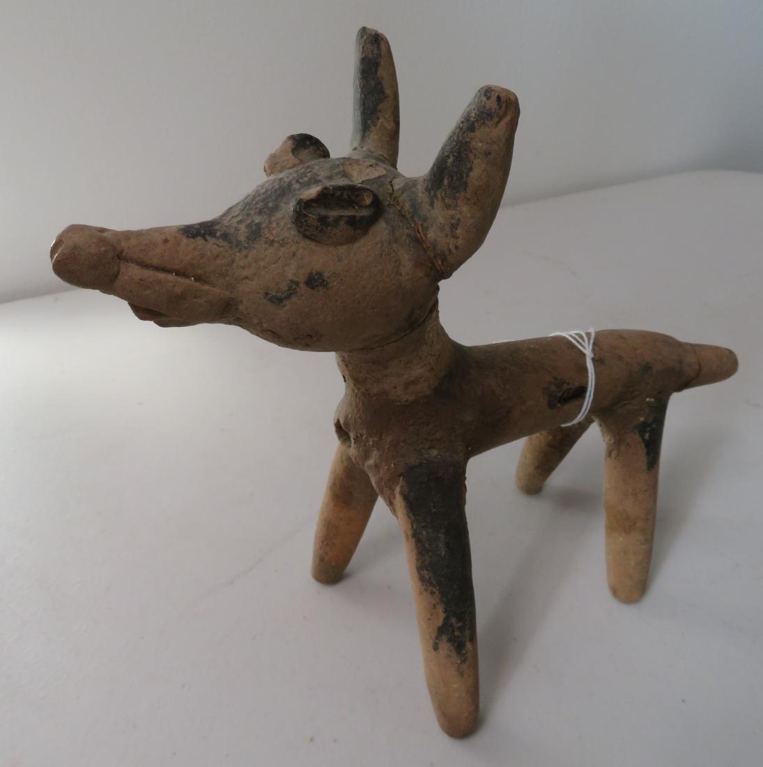 Large Veracruz Dog - 3