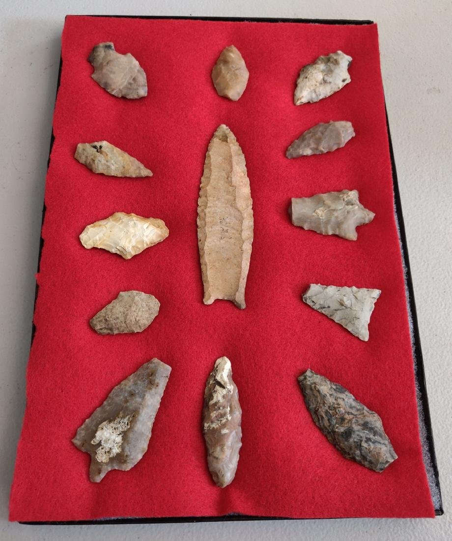 Artifact Collection with Large Clovis Point