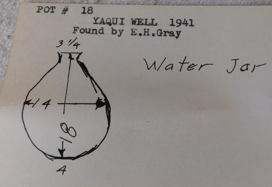 Pre-Historic Water Bottle - 8