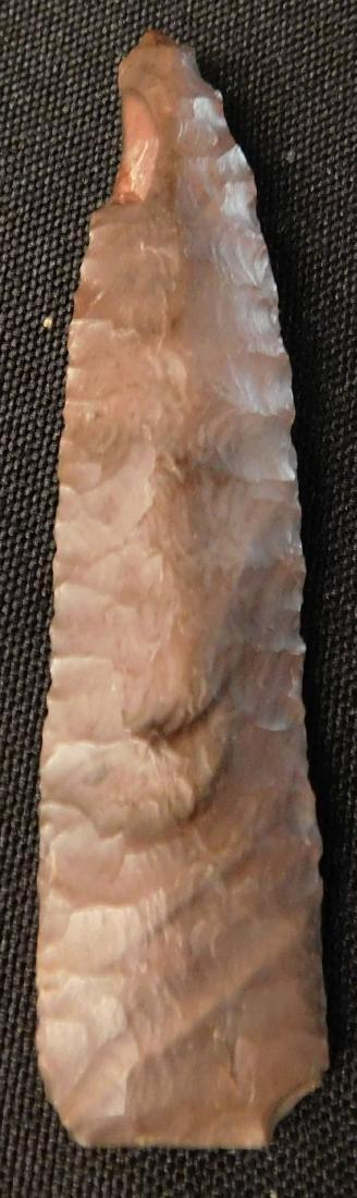 Paleo First View w/Jackson COA - 5