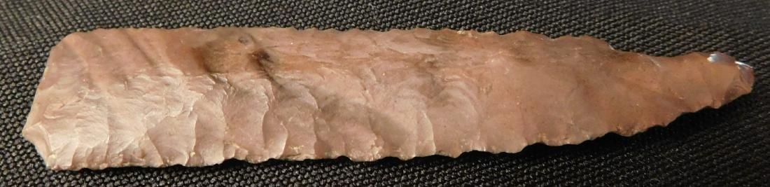 Paleo First View w/Jackson COA - 7