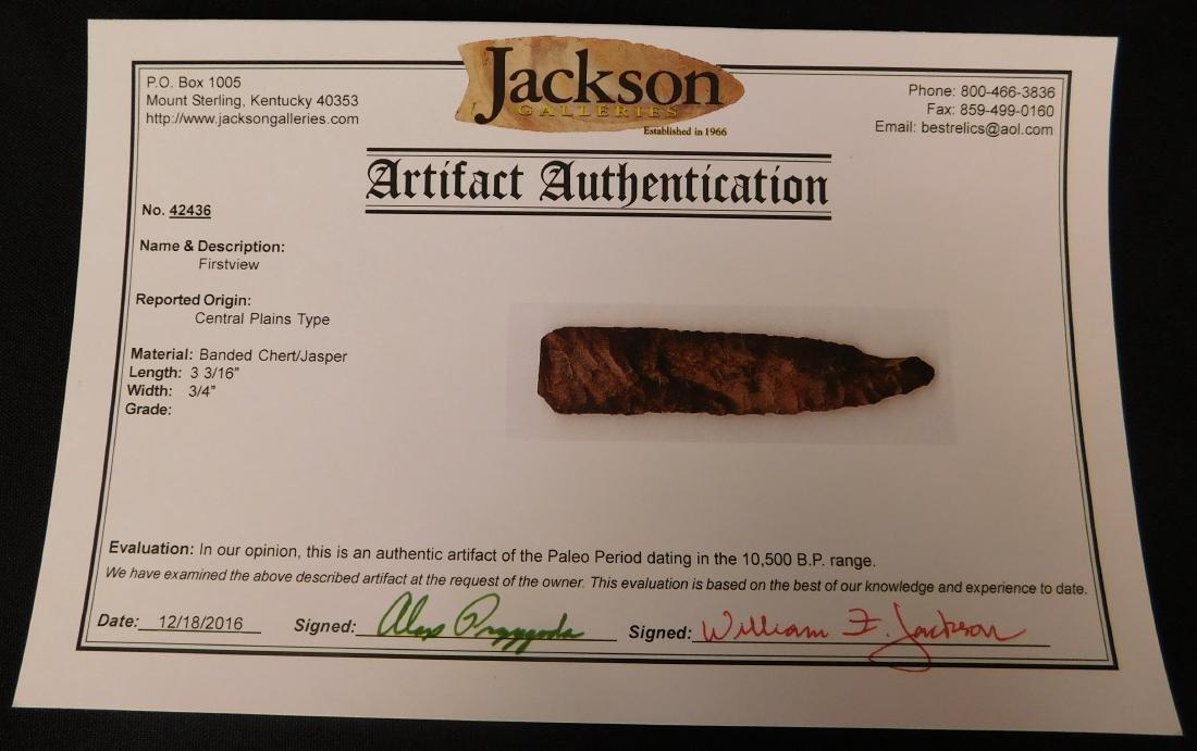 Paleo First View w/Jackson COA - 8