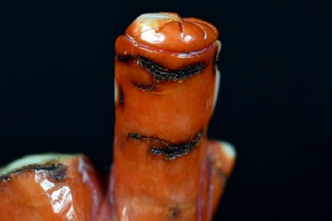 Carved Coral Statue of a Lohan - 5