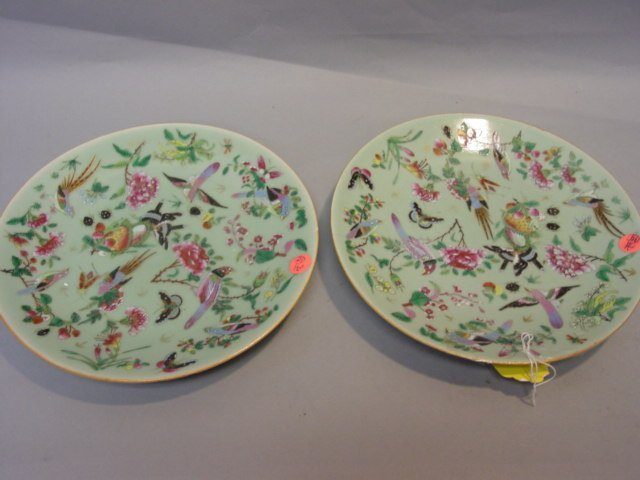 10: Two Famille Verte Plate with Birds and Flowers