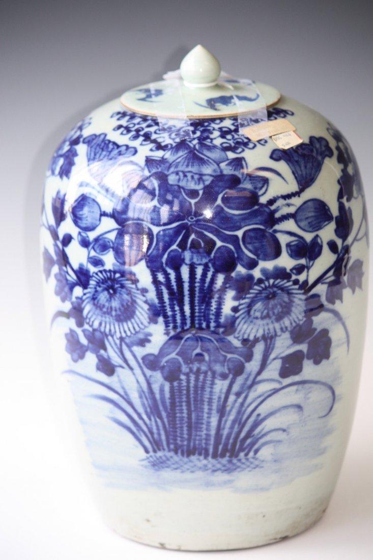 19: Chinese Blue & White Glaze Porcelain Ginger Jar