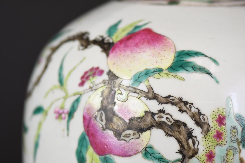 Chinese Famille Rose Porcelain Ginger Jar - 7