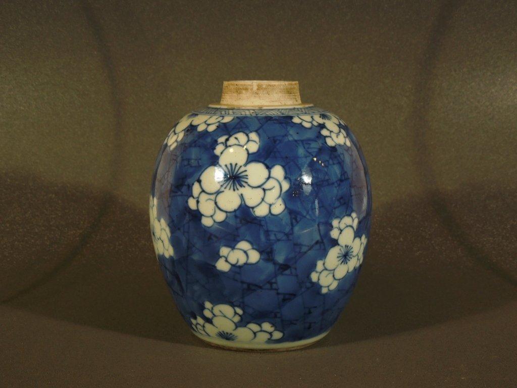 8: Chinese Kangxi 18th C. Blue/White Cracked Ice Jar