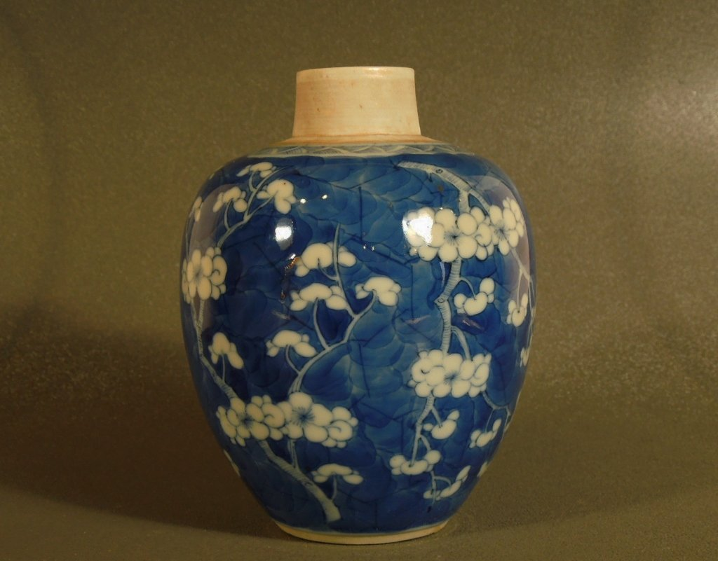 9: 19th Century Chinese Porcelain Blue and White Jar