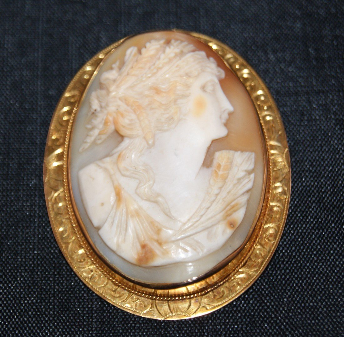 39: Artisan Carved Oval Shell & 10K Gold Cameo Brooch