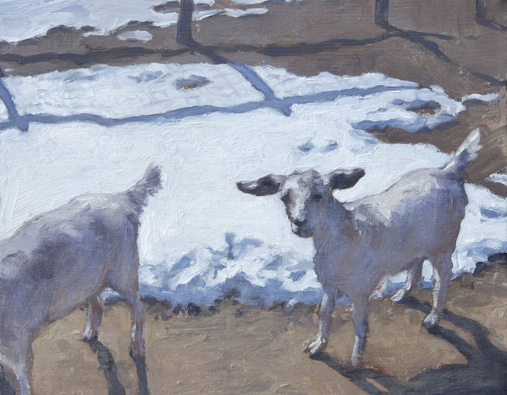 Ken's Neighbor's Goats, by Loren Arsen