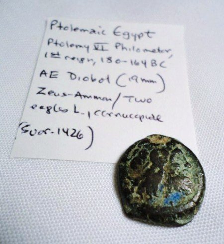 19: 180-164 B.C. PTOLEMAIC EGYPT PTOLEMY VI COIN