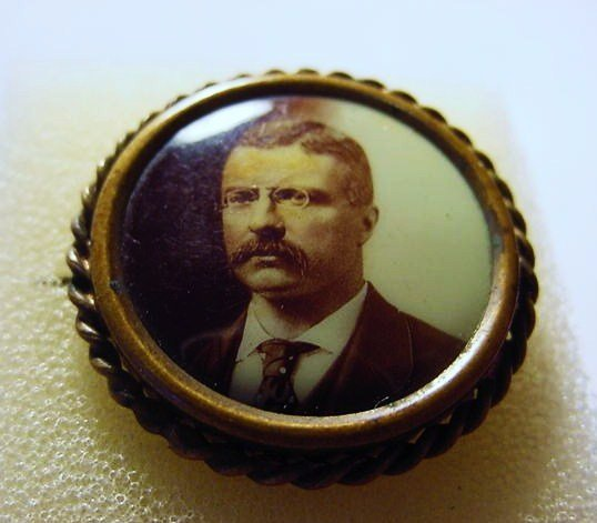 TEDDY ROOSEVELT CAMPAIGN PIN