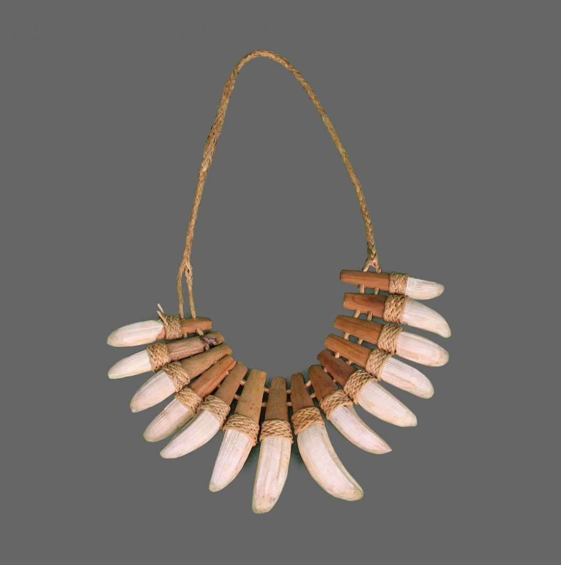 Crocodile Tooth Necklace: Native American Crocodile Tooth Necklace. Comes With